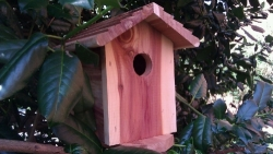 Outdoor DVR Hidden Nanny Camera Bird House With 30 Day Battery