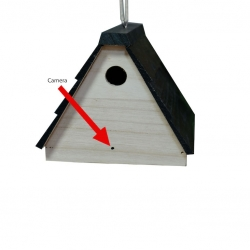 Outdoor Motion Detection Birdhouse Hidden Nanny Camera